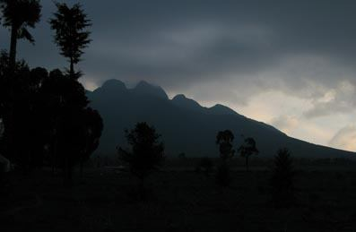Parc des Volcans, Rwanda