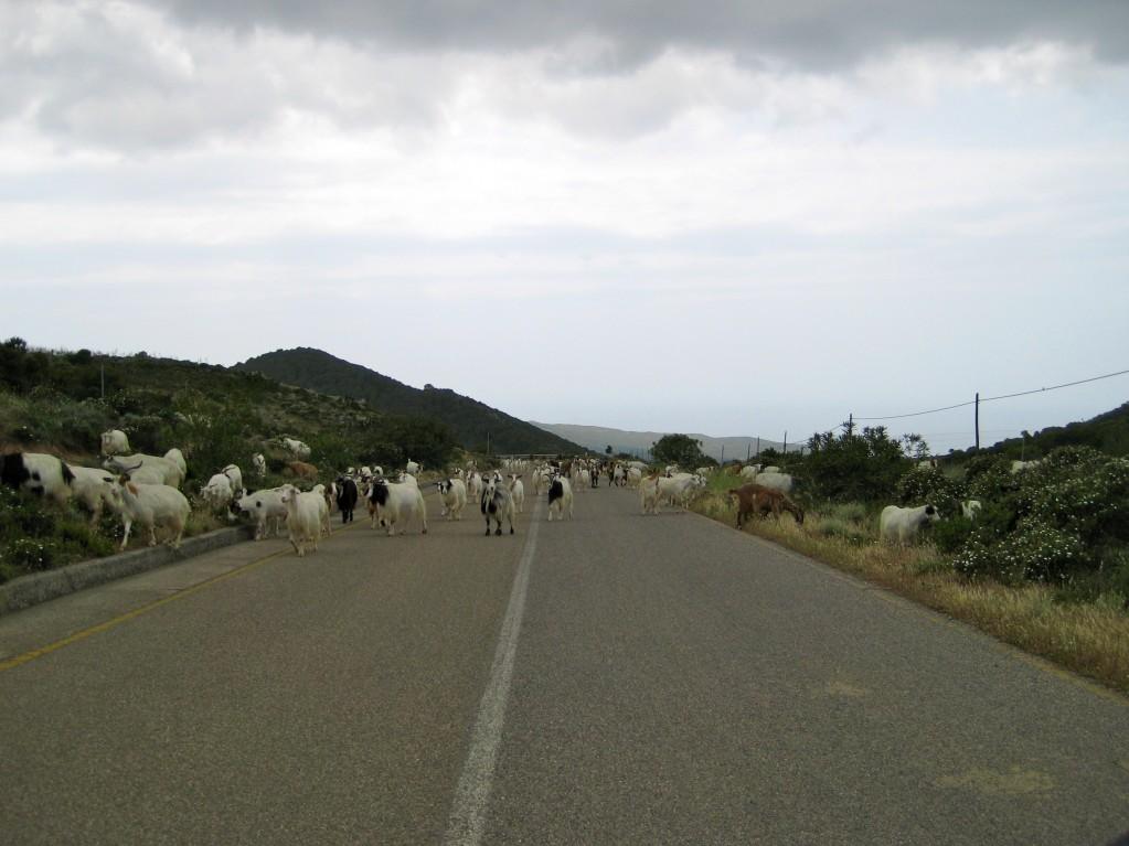 Traffic Jam along the road hugging Costa Verde