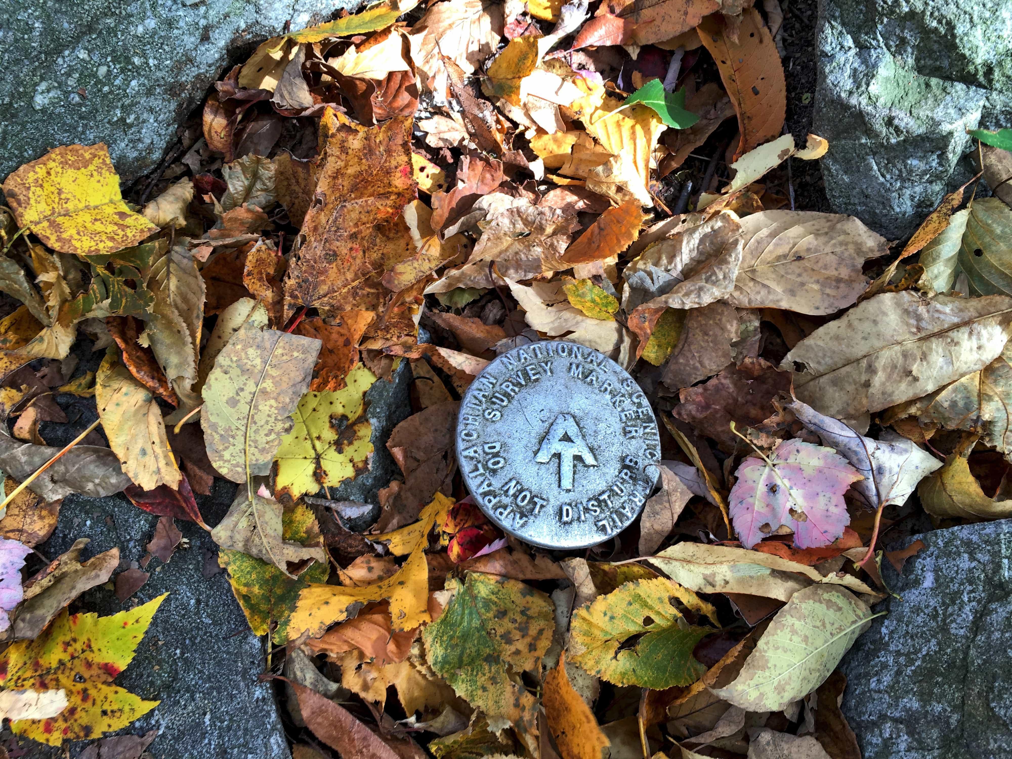 Appalachian Trail marker (photo: Steve Raubenstine)