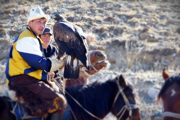 young kyrgyz men on horse with eagle