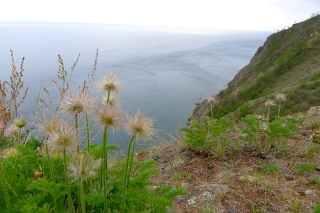 Another view of Lake Baikal in June