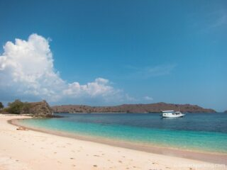 Pink Beach: Sunbathing and Snorkeling on Komodo Island