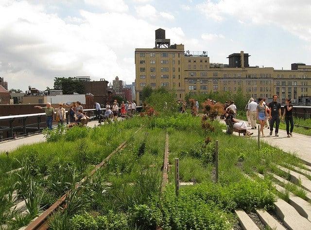 Highline (photo: Jessica Sheridan)