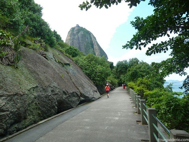 Sugar Loaf seen from Claudio Coutinho Pedestrian Walkpath