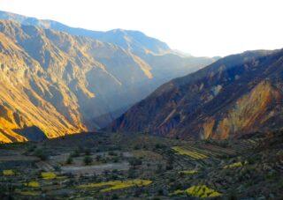 Hiking Colca Canyon: A Test of Endurance in Peru