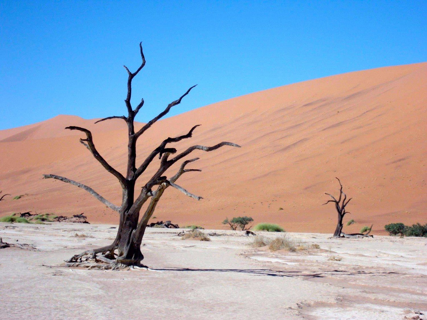 Why Namibia Should Be On Your Itinerary