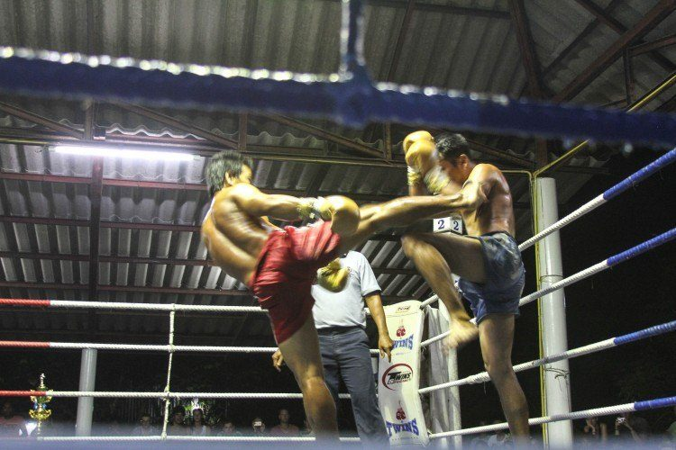 Unique attractions in Koh Tao, muay thai