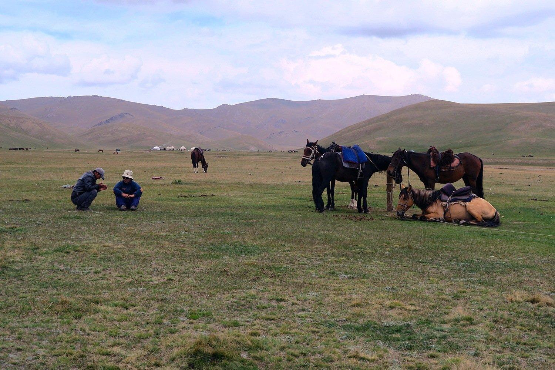 Traditional Kyrgyz transportation.