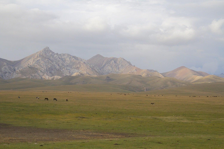 The mountains of Son Kol, Kyrgyzstan