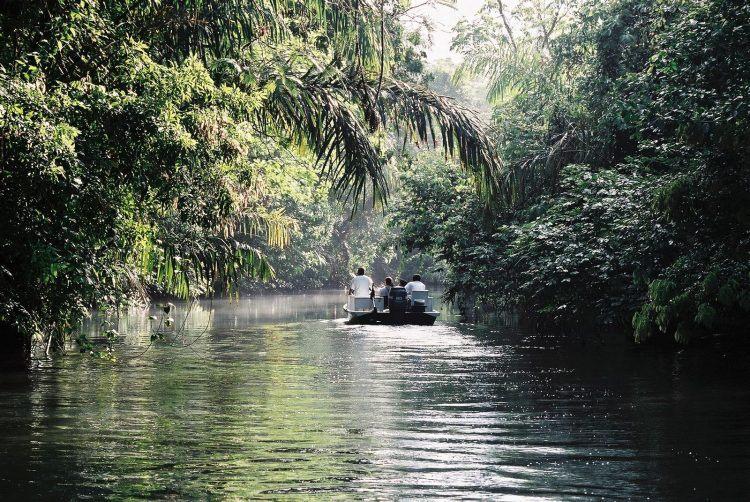 Tortuguero in Costa Rica (photo: Wiki Commons)