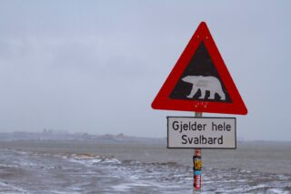Explore Svalbard: Adventure Activities Near the North Pole
