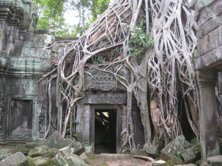 Ta Prohm, Cambodia is a unique travel destination in Southeast Asia