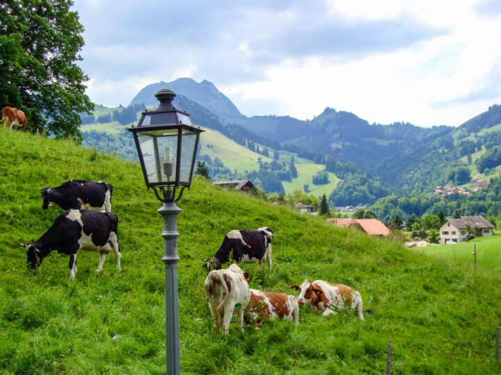 You can have a great time visiting Switzerland on a Budget!