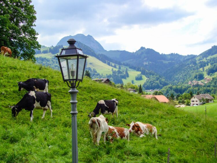 You can have a great time visiting Switzerland on a budget
