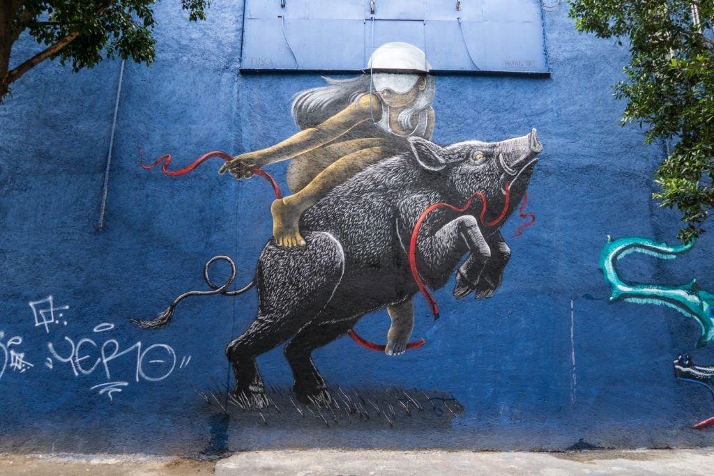 Boar mural - Mexico City
