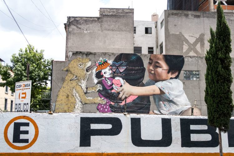 Street art and graffiti tour in Mexico City