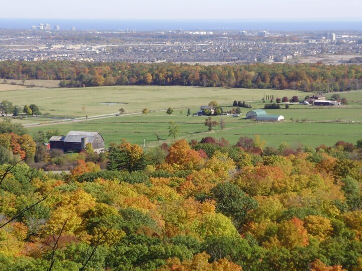 Fall foliage as seen from Mount Nemo