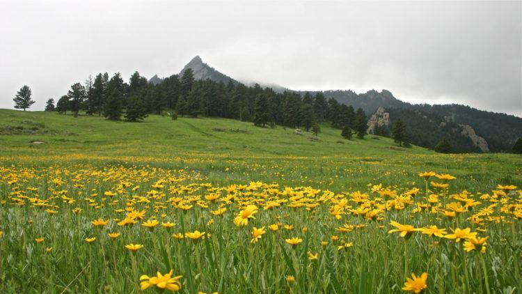 Chautaugua Meadow - Boulder, Colorado (photo: Jeff Turner)