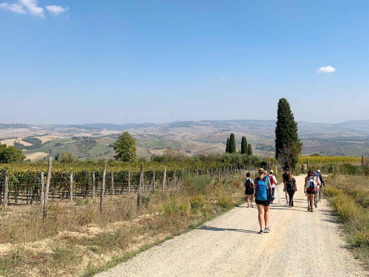 Val d'Orcia landscape, Via Francigena - Tuscany