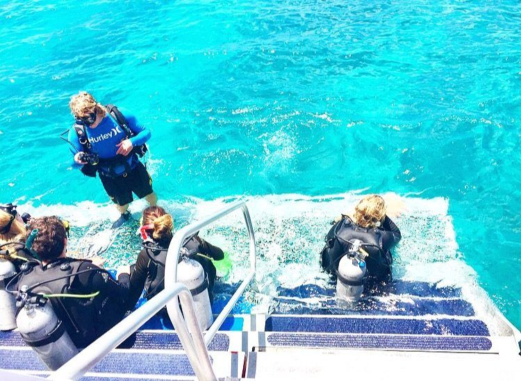 A snorkel and dive day trip in Cairns, Australia