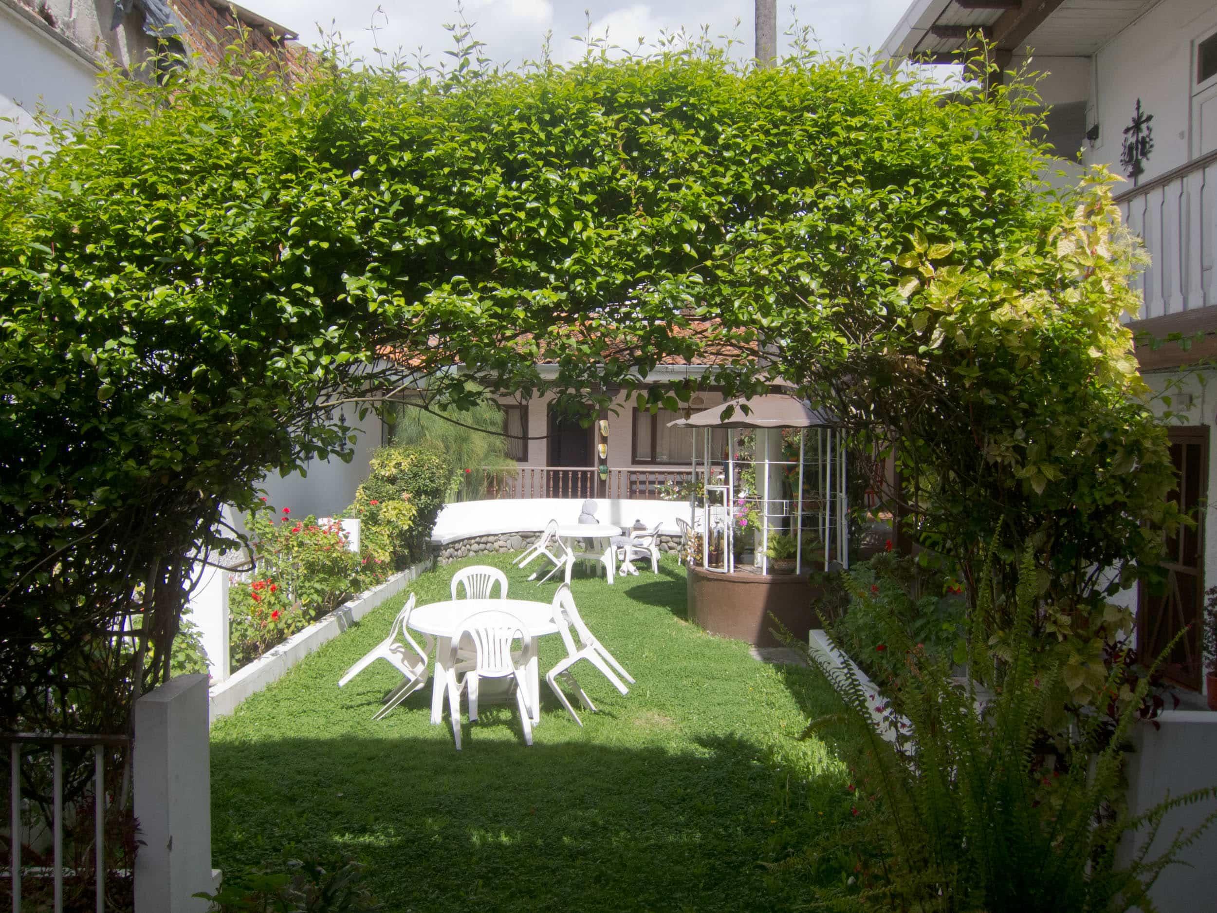 Garden at Hostal Macondo