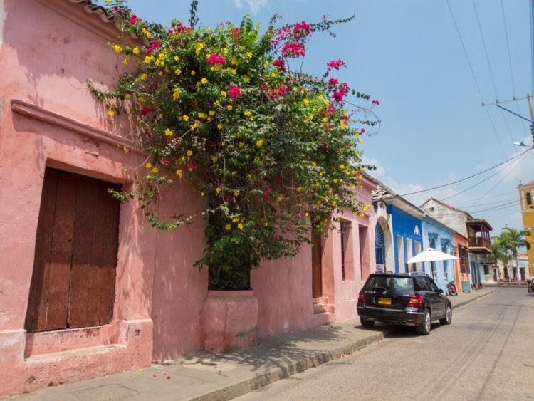 Flowers on a Cartagena street
