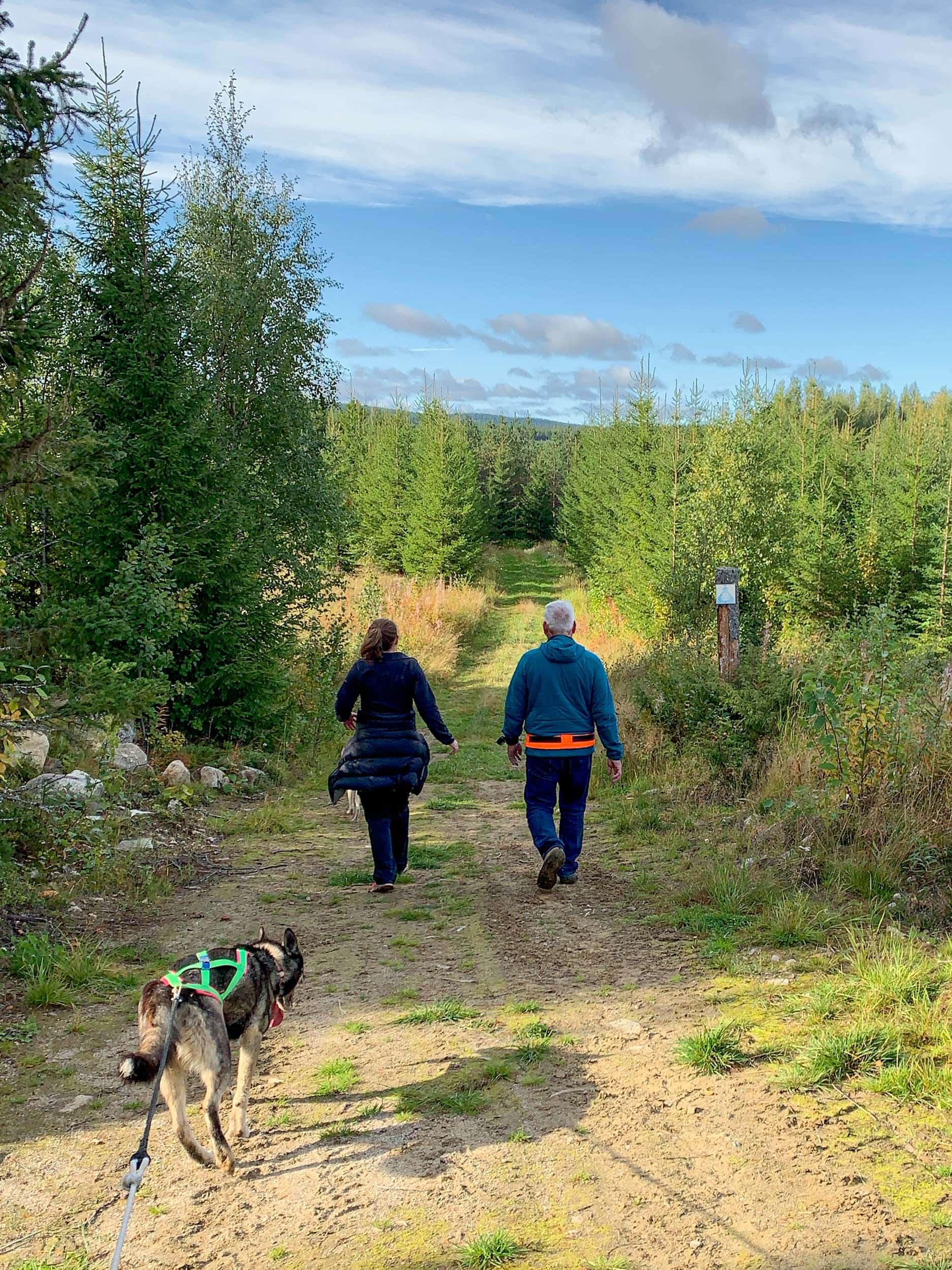Husky hike
