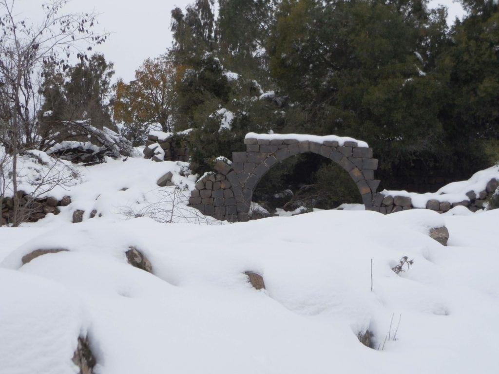 Snow in Bashanit Ridge