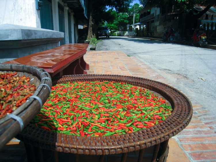 Peppers drying in Luang Prabang