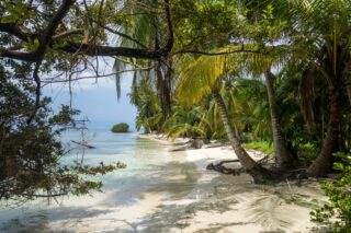 Beach in Panama (photo: grebmot, Pixabay)