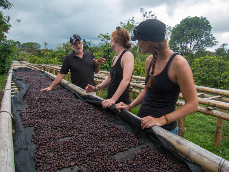 Coffee tour at Finca Dos Jefes