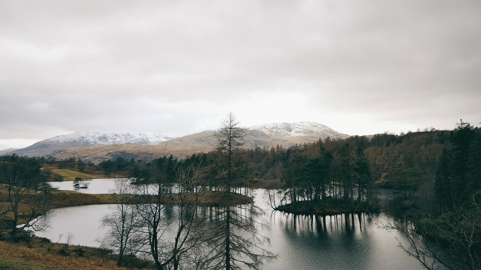 Tarn Hows is an easy-going walk  (photo: David Perkins)