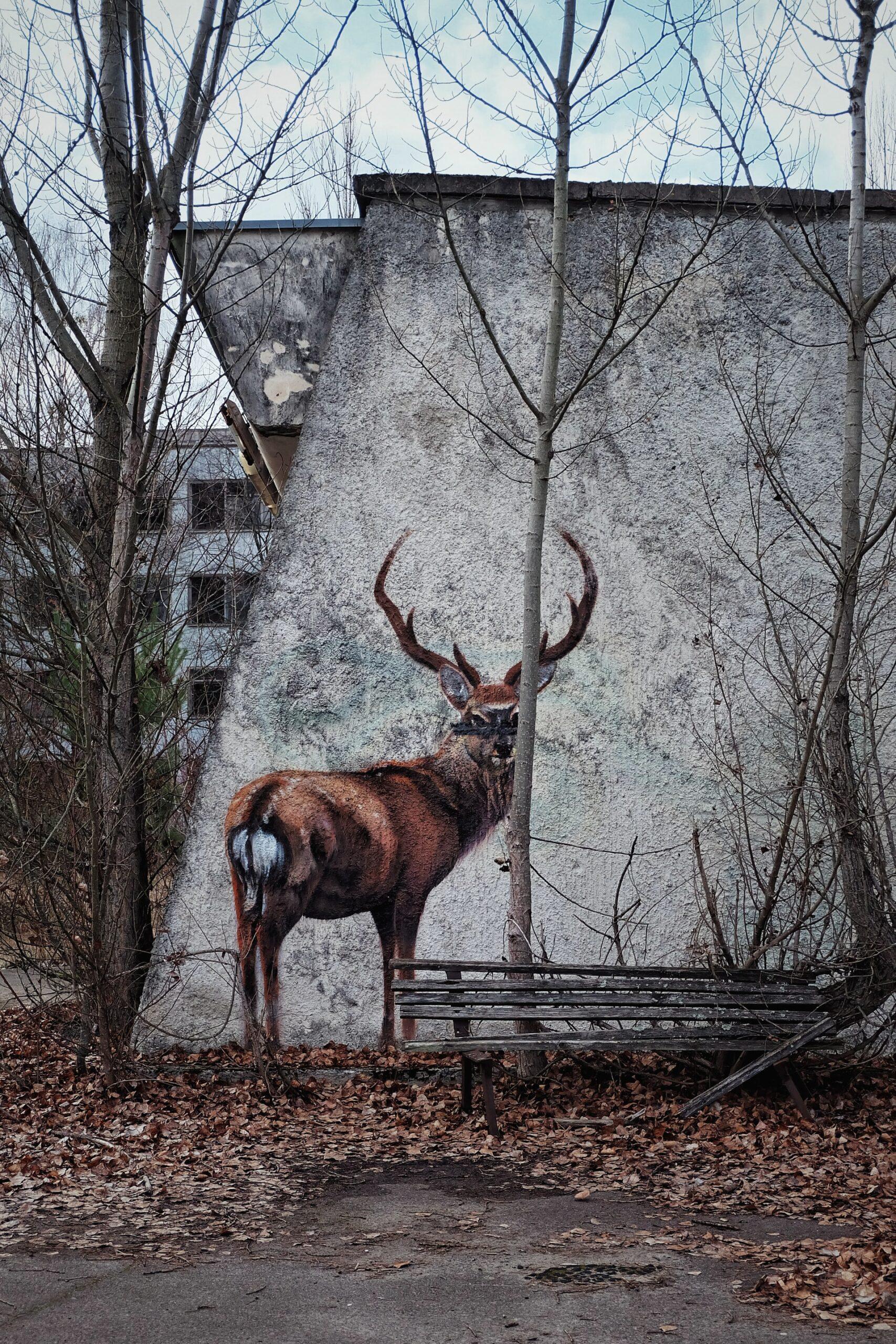 Chernobyl deer mural (photo: Oleksandra Bardash, Unsplash)
