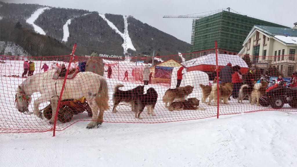 Yabuli ski resort in Heilongjiang
