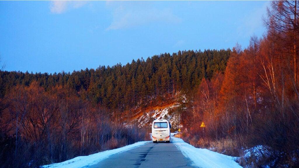 Bus driving through Heilongjiang woodland