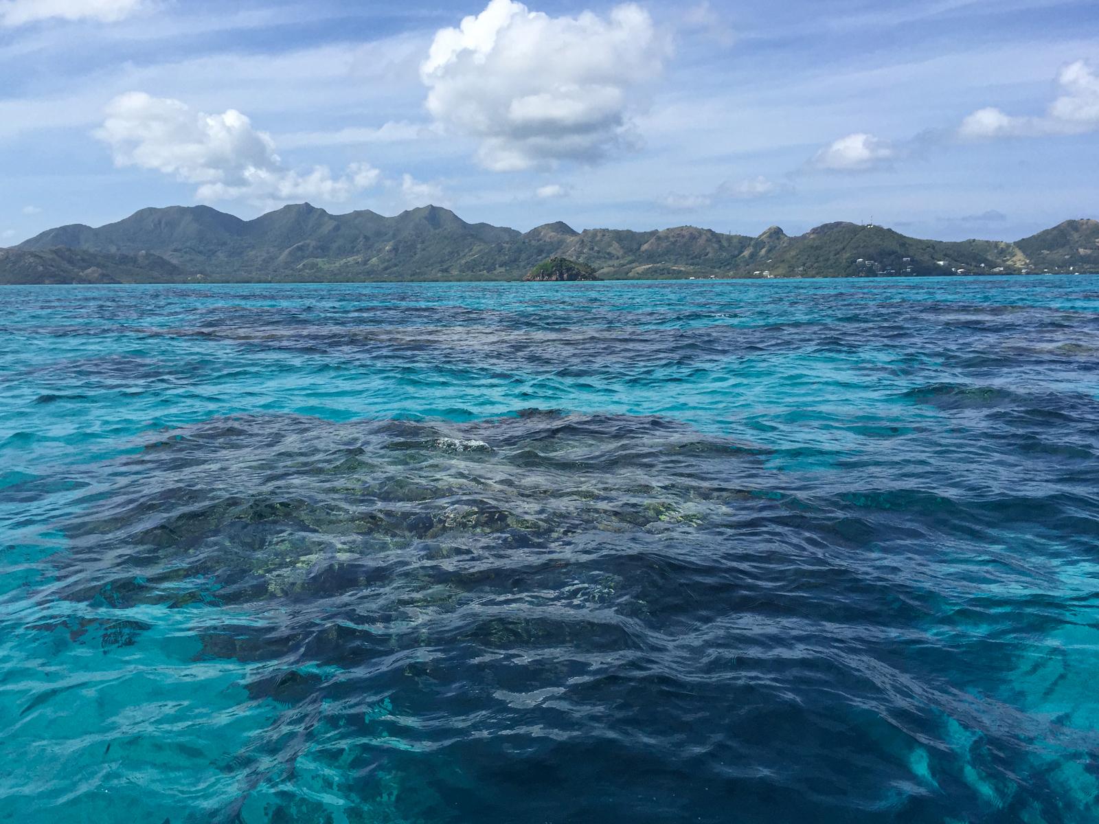 Coral reef near Crab Caye