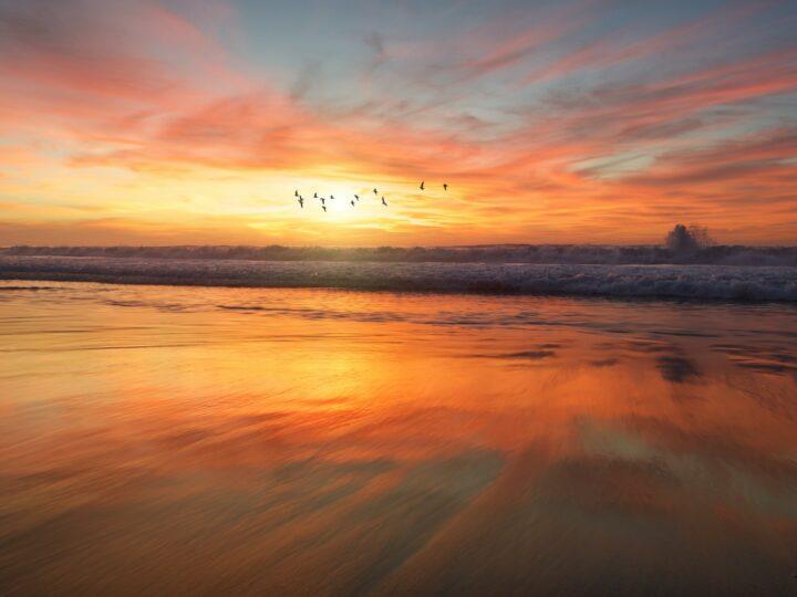 San Diego beach sunrise (Frank Mckenna)