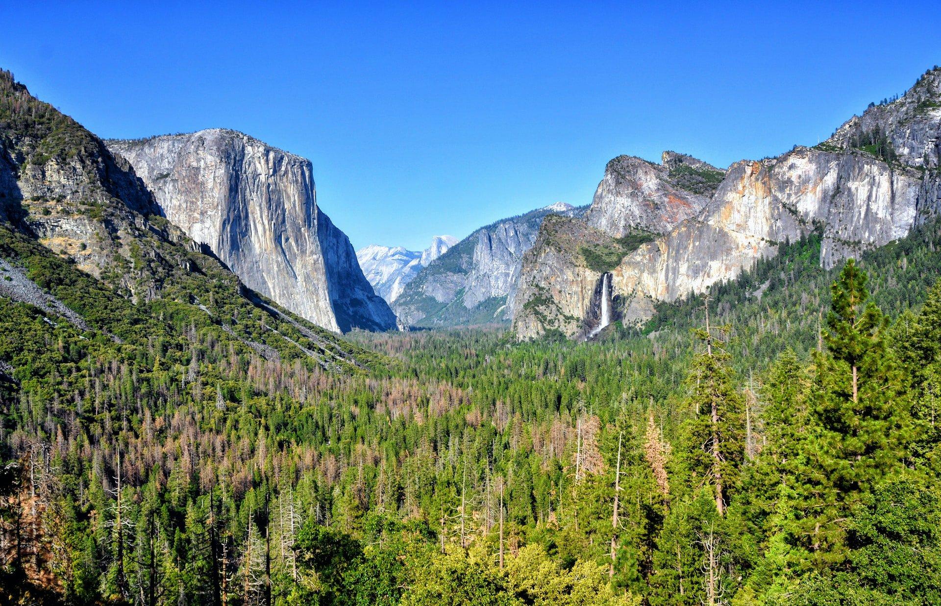 Tunnel View at Yosemite National Park (photo: Anukrati Omar)